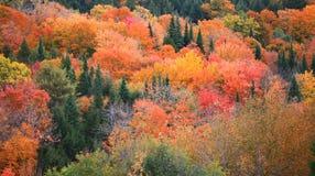Nedgång i lantliga Vermont Royaltyfria Bilder