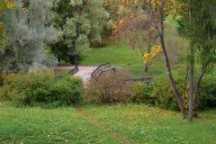 Nedgång i parklanden Arkivbild
