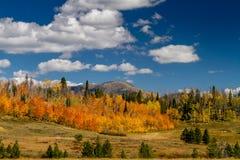 Nedgång i Steamboat Springs Colorado arkivbilder