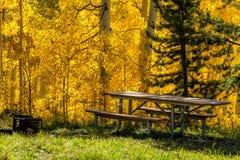 Nedgång i Steamboat Springs Colorado royaltyfri foto