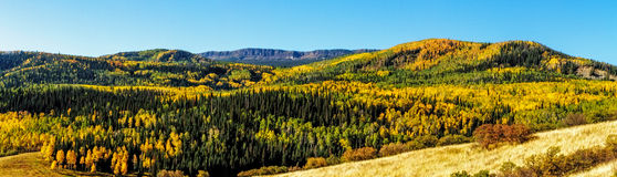 Nedgång i Steamboat Springs Colorado Royaltyfri Fotografi