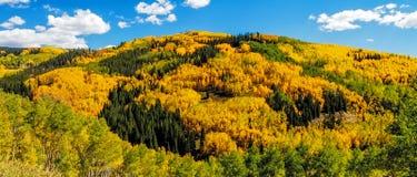 Nedgång i Steamboat Springs Colorado Arkivfoto
