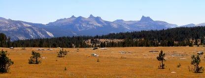 Nedgång i Yosemite Royaltyfria Foton