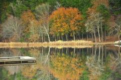 Nedgång på sjön Royaltyfri Foto