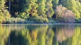 Nedgång sjö Arkivfoto