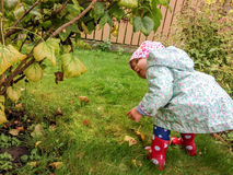 Nedgång som älskar lilla barnet royaltyfri fotografi