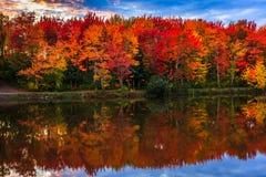 Nedgång som är färgrik i New Brunswick, Kanada arkivfoton