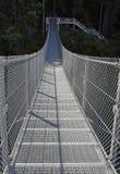 Nedgångar för älg för metallupphängningbro, Campbell River royaltyfria bilder
