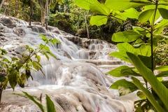Nedgångar för flod för Dunn ` s i Jamaica arkivbilder