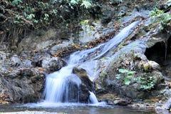 Nedgångar i den öPalawan djungeln Royaltyfria Bilder