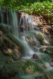 Nedgångar i skog Royaltyfri Foto