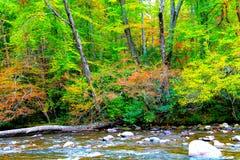 Nedgångar med flodbakgrund Royaltyfria Bilder