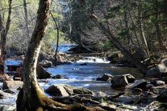 Nedgångar och flod royaltyfri fotografi