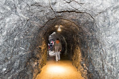Nedgångarna för Trà ¼mmelbach Schweiz Royaltyfria Foton