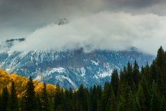 Nedgångatmosfär i de västra älgarna Royaltyfri Foto