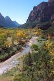 Nedgången färgar i dalen av den jungfruliga floden i Zion National Park Royaltyfria Bilder