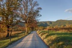 Nedgången färgar på den förtrollade vägen på den rökiga bergnationalparken under solnedgång med fokusen på träd Fotografering för Bildbyråer