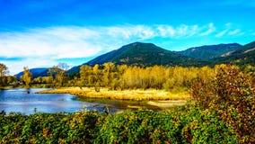 Nedgången färgar runt om det Nicomen träsket, en filial av Fraser River, som den flödar till och med Fraser Valley royaltyfria bilder