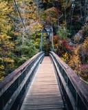 Nedgången färgar upphängningbron fotografering för bildbyråer