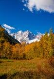 Nedgångfärg i Aspen Colorado Royaltyfri Bild