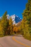 Nedgångfärg i Aspen Colorado Royaltyfri Fotografi