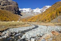Nedgångfärg i det höga berget, Ayas dal, Aosta Italien royaltyfri fotografi