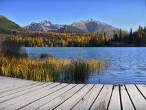 Nedgångfärg- och berglandskap Arkivfoto