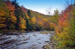 Nedgångfärger av New England på floden Royaltyfri Bild