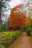 Nedgångfärger i Loviisa, Finland Royaltyfria Foton