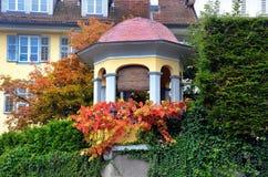 Nedgångfärger i Schweiz Arkivfoton