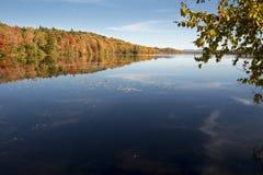 Nedgångfärger längs den Androscoggin floden i Milan, New Hampshire arkivbilder