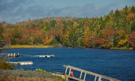 Nedgångfärger längs kusten av Nova Scotia royaltyfria bilder