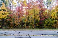 Nedgångfärger på en väg i Michigan Arkivbild