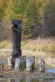 Nedgångfärger reflekteras i en flod i Wisconsin Royaltyfri Bild