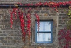 Nedgångfönster Arkivfoto