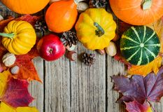 Nedgångfrukt på trä Nedgångfrukt och grönsaker med lönnlöv, muttrar och sörjer kottar Royaltyfria Foton