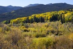 Nedgånghöstfärger i det Kebler passerandet, Colorado Amerika i Autumn Fall royaltyfri foto