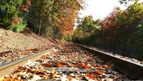 Nedgångjärnväg royaltyfri fotografi