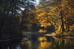 Nedgånglövverk i skog på sjön med reflexioner, Mansfield, anslutning Arkivbild