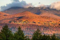 Nedgånglövverk med Mt. Mansfield i bakgrunden. Arkivbild