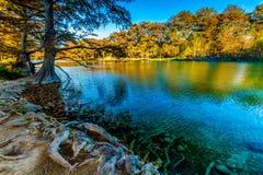 Nedgånglövverk på den kristallklara Frio floden i Texas royaltyfri foto