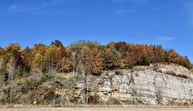 Nedgånglövverk på kullarna av Pike County arkivfoto