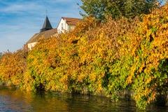 Nedgånglövverk på LaFrette sur Seine Arkivfoto