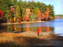 Nedgånglövverk på sjön Massabesic royaltyfri foto