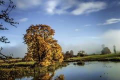 Nedgånglövverk reflekterad i dammet med änder fotografering för bildbyråer