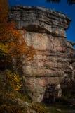 Nedgånglövverk ses nära granitoutcropping längs att fotvandra slingan på Sams punktsylten Royaltyfria Bilder