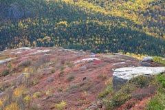 Nedgånglandskap, Kanada Royaltyfri Bild