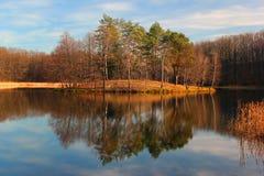 Nedgånglandskap - ljusa höstfärger av skogen vid sjön arkivbild