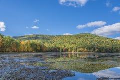 Nedgånglandskap reflekterar på en Muddy Pond Royaltyfria Bilder