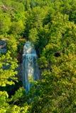 Nedgångliten vik faller den Tennessee vattenfallet royaltyfri foto